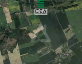 Działka na sprzedaż, Gliszcz, 2441 m²