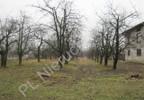 Działka na sprzedaż, Kornelówka, 75000 m² | Morizon.pl | 0405 nr2
