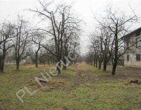 Działka na sprzedaż, Kornelówka, 75000 m²