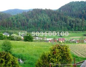 Dom na sprzedaż, Krynica-Zdrój, 112 m²