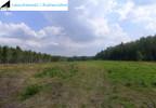 Działka na sprzedaż, Grzybnica, 45300 m²   Morizon.pl   6826 nr5