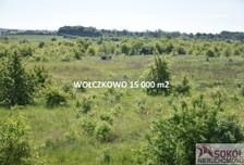Działka na sprzedaż, Wołczkowo Leśna, 15000 m²