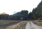Działka na sprzedaż, Polne, 67800 m² | Morizon.pl | 6325 nr5