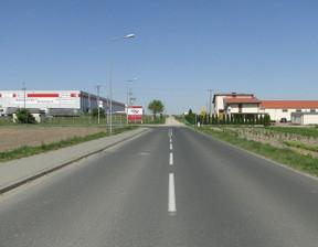Działka na sprzedaż, Kórnik, 5000 m²