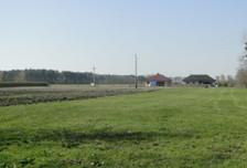 Działka na sprzedaż, Kórnik, 4900 m²