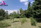 Działka na sprzedaż, Rybnik Maroko-Nowiny, 4008 m² | Morizon.pl | 0211 nr4