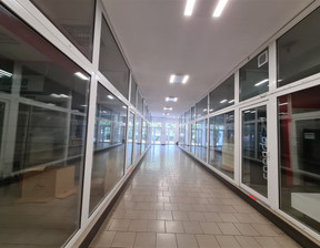 Komercyjne do wynajęcia, Poznań Stare Miasto, 300 m²