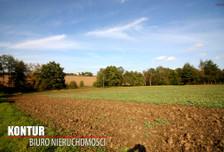 Działka na sprzedaż, Ogrodzona, 4000 m²