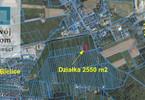 Morizon WP ogłoszenia | Działka na sprzedaż, Biesiekierz Rumiankowa, 2550 m² | 0828
