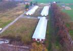 Działka na sprzedaż, Rokszyce, 54484 m² | Morizon.pl | 3726 nr6