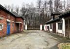 Centrum dystrybucyjne na sprzedaż, Gorzyczki, 36700 m² | Morizon.pl | 6585 nr19