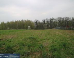 Działka na sprzedaż, Olszowice, 3900 m²