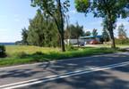 Obiekt na sprzedaż, Domaszowice, 357 m² | Morizon.pl | 0405 nr2