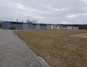 Magazyn, hala do wynajęcia, Września, 1000 m²