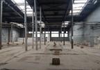 Magazyn, hala na sprzedaż, Świdnica, 10000 m² | Morizon.pl | 3137 nr3