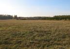 Działka na sprzedaż, Woźniki, 10670 m² | Morizon.pl | 0771 nr2