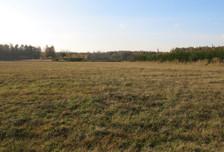 Działka na sprzedaż, Woźniki, 10670 m²