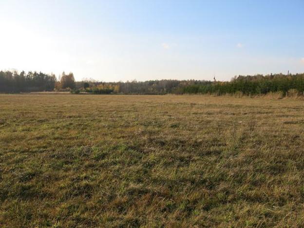 Działka na sprzedaż, Woźniki, 10670 m² | Morizon.pl | 0771