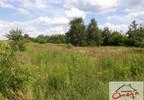 Działka na sprzedaż, Włodowice Włodowice, 5980 m²   Morizon.pl   5005 nr3