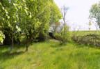 Działka na sprzedaż, Dąbrówno, 5700 m²   Morizon.pl   1732 nr11