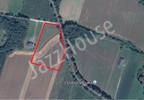 Działka na sprzedaż, Pasikonie, 12041 m² | Morizon.pl | 2016 nr4