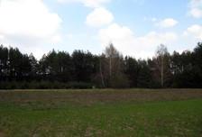Działka na sprzedaż, Zelgoszcz, 20303 m²