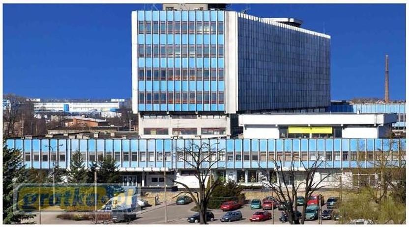 Obiekt do wynajęcia, Pabianice Warszawska, 225 m² | Morizon.pl | 1366