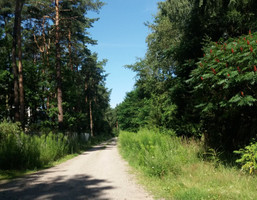 Morizon WP ogłoszenia | Działka na sprzedaż, Magdalenka, 1830 m² | 3799