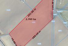 Działka na sprzedaż, Gołuski Nadrzeczna, 18000 m²
