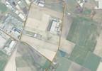 Działka na sprzedaż, Tarnowo Podgórne Szumin, 5765 m² | Morizon.pl | 4766 nr5