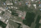 Działka na sprzedaż, Tarnowo Podgórne Szumin, 5765 m² | Morizon.pl | 4766 nr6