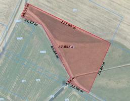 Morizon WP ogłoszenia | Działka na sprzedaż, Tarnowo Podgórne Szumin, 5765 m² | 0726