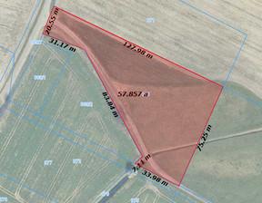 Działka na sprzedaż, Tarnowo Podgórne Szumin, 5765 m²