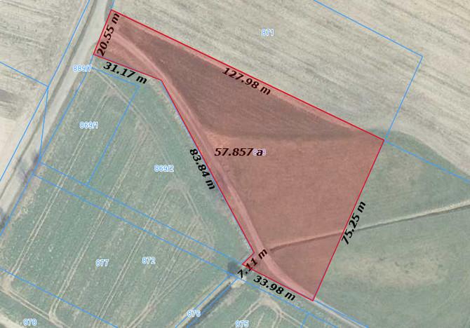 Działka na sprzedaż, Tarnowo Podgórne Szumin, 5765 m² | Morizon.pl | 4766