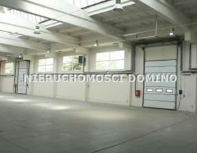 Magazyn, hala do wynajęcia, Pabianice, 1603 m²