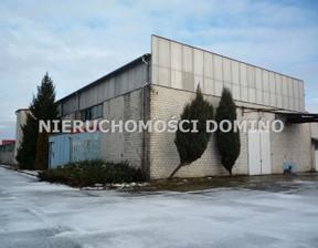 Magazyn, hala do wynajęcia, Pabianice, 3090 m²