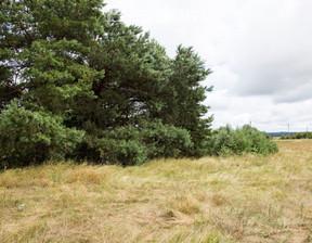 Działka na sprzedaż, Radomin, 4400 m²