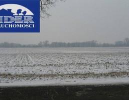 Morizon WP ogłoszenia | Działka na sprzedaż, Lusówko, 81000 m² | 5588