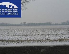 Działka na sprzedaż, Lusówko, 81000 m²