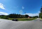 Działka na sprzedaż, Dąbrówka, 43000 m²   Morizon.pl   4200 nr8