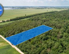 Działka na sprzedaż, Niemce, 6200 m²