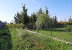 Działka na sprzedaż, Wilkowa Wieś, 4033 m²   Morizon.pl   6931 nr4