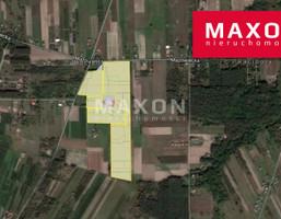 Morizon WP ogłoszenia | Działka na sprzedaż, Nowe Racibory, 172050 m² | 0400
