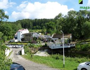 Lokal gastronomiczny na sprzedaż, Zagórze Śląskie, 246 m²