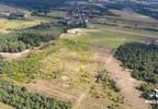 Działka na sprzedaż, Krubin Nowodworska, 148552 m² | Morizon.pl | 8788 nr3