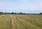 Działka na sprzedaż, Złotokłos, 18100 m² | Morizon.pl | 6361 nr8