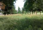 Działka na sprzedaż, Kłaj, 7500 m² | Morizon.pl | 3710 nr7
