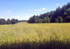 Działka na sprzedaż, Malinniki, 11000 m²   Morizon.pl   6294 nr2