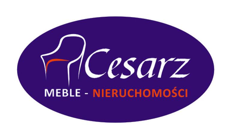 Przemysłowy na sprzedaż, Wieluń, 10000 m² | Morizon.pl | 8233