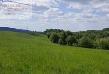 Działka na sprzedaż, Lutcza, 46000 m²